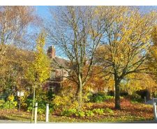 Autumn-in-Frodsham-1-20121110_141624ee.jpg